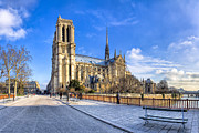 French Gothic Architecture Posters - Notre Dame de Paris in Winter Sun Poster by Mark E Tisdale