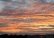Patricia Sundik - November Sunset