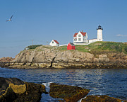 Nubble Lighthouse Framed Prints - Nubble in the Day 16x20 Framed Print by Geoffrey Bolte