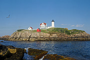 Nubble Lighthouse Framed Prints - Nubble in the Day 20x30 Framed Print by Geoffrey Bolte