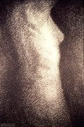 Nudity Art - Nude Female Torso Drawings 4 by Gordon Punt