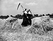 Oats Prints - Nuns Harvest Oats In Fields Print by Underwood Archives