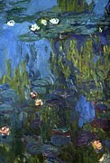 Reflection Paintings - Nympheas by Calude Monet