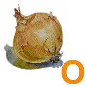 Onion Paintings - O Art Alphabet for Kids Room by Irina Sztukowski