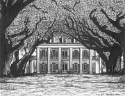 Mansion Drawings - Oak Alley by Bruce Kay