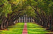 Oak Alley Plantation Photo Prints - Oak Alley Print by Steve Harrington