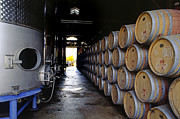 Wine Cellar Photos - Oak Barrels at Ventana Vineyards by Craig Lovell