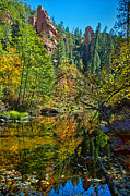 Oak Creek Photo Originals - Oak Creek Beauty by Brian Lambert