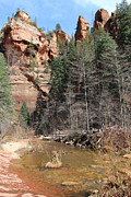 Wendi Evans Art - Oak Creek Canyon by Wendi Evans