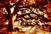 Fire Art - Oak by Scott Norris