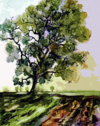 Oak Mixed Media Prints - Oak Tree in Late Summer Print by Ginette Callaway