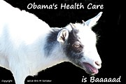 Obamacare Framed Prints - Obamacare is Baaaaaad Framed Print by Eric  Schiabor