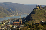 Rhine Valley Posters - Oberwesel Rhine and Schoenbrunn Castle Poster by David Davies