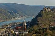 Rhine Valley Posters - Oberwesel Rhine and Schoenbrunn Castle Germany Poster by David Davies