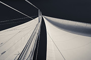Rope Art - Obsession Sails 1 Black and White by Scott Campbell