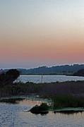 Carolyn Stagger Cokley - oc sunset