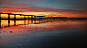 Photography Surf Framed Prints - Ocean Beach California Pier 3 Panorama Framed Print by Larry Marshall