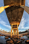 Fisheye Prints - Ocean Beach California Pier 5 Print by Larry Marshall