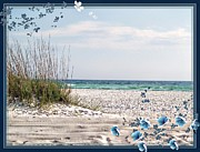 Florida Flowers Digital Art Framed Prints - Ocean Breeze Framed Print by Athala Carole Bruckner
