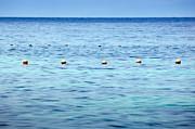 Tim Hester - Ocean Buoys