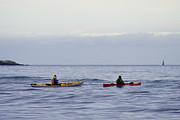 Marilyn Wilson - Ocean Kayaks