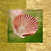 Seashell Art Metal Prints - Ocean Life Metal Print by Lourry Legarde