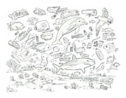 Pollution Drawings - Ocean Plastic Activity by T Visco