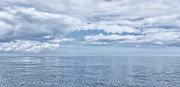 Svetlana Sewell - Ocean