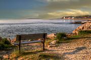 Brenda Giasson - Oceanside Bench