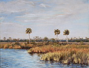 Pam Talley - Ochlockonee River Palms