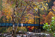 Fall River Scenes Prints - Ocoee River Bridge Print by Debra and Dave Vanderlaan
