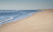 Ocracoke Beach Print by Steven Ainsworth