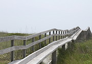 Ocracoke Boardwalk Print by Cathy Lindsey