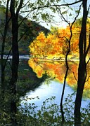 """fall Foliage"" Paintings - October At Ohiopyle by Barbara Jewell"