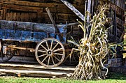 Country Scenes Metal Prints - October Barn Metal Print by Jan Amiss Photography