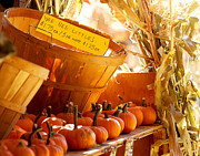 October Market Print by Jim Garrison
