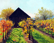 Autumn Vineyards Paintings - Octobers Golden Glow by Armand Cabrera