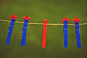 Clothes Pins Photos - Odd One Out by Carolyn Rauh