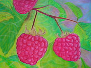 Ode To A Raspberry Print by Rachel Cruse