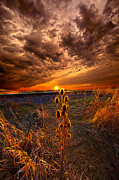 Phil Koch - Of Wonders Lost