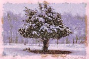 Lorri Crossno Art - Oh Christmas Tree by Lorri Crossno
