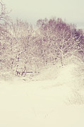 Winter Scene Photo Prints - Oh Lord Who Will Comfort Me Print by Jenny Rainbow