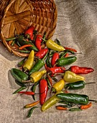 Hot Peppers Prints - Oh so Hot Print by Todd and candice Dailey