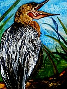 Anhinga Paintings - Oh What a Beautiful Morning by Lil Taylor