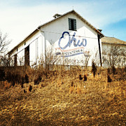 Bicentennial Prints - Ohio Barn Print by Rachel Counts