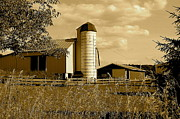 Amish Prints - Ohio Farm in Sepia Print by Robert Harmon