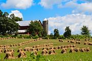 Jim Wilcox - Ohio Farm