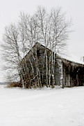 Snow On Barn Posters - Ohio midwestern winter Poster by Joanne Beebe