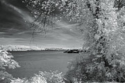 Mary Almond - Ohio River