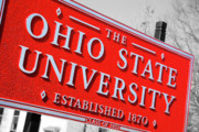 Ohio State University Prints - Ohio State University Print by Rachel Counts
